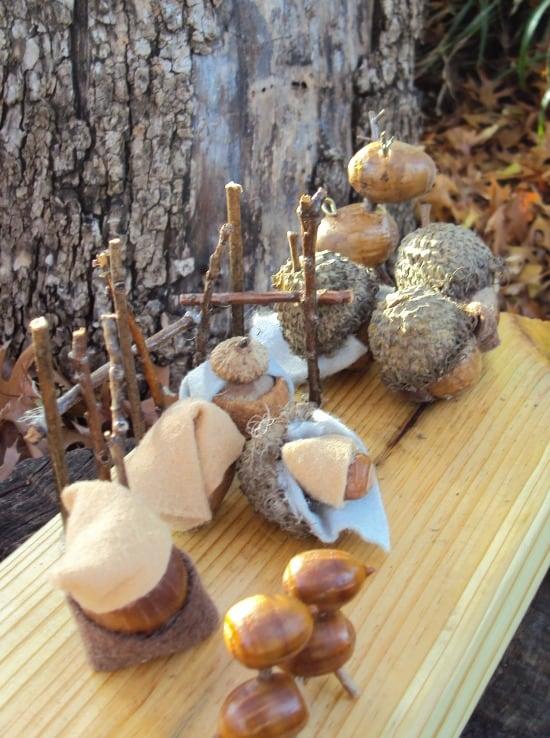 acorn-nativity-project