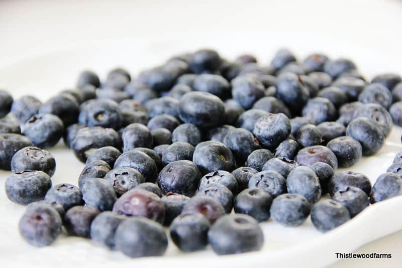 Plenty of delicious looking blueberries