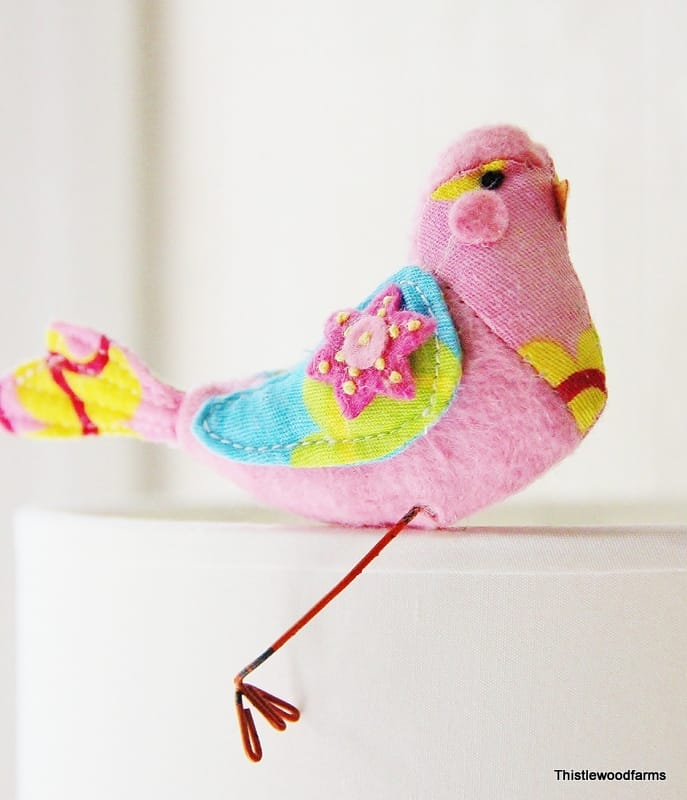 pink turquoise bird