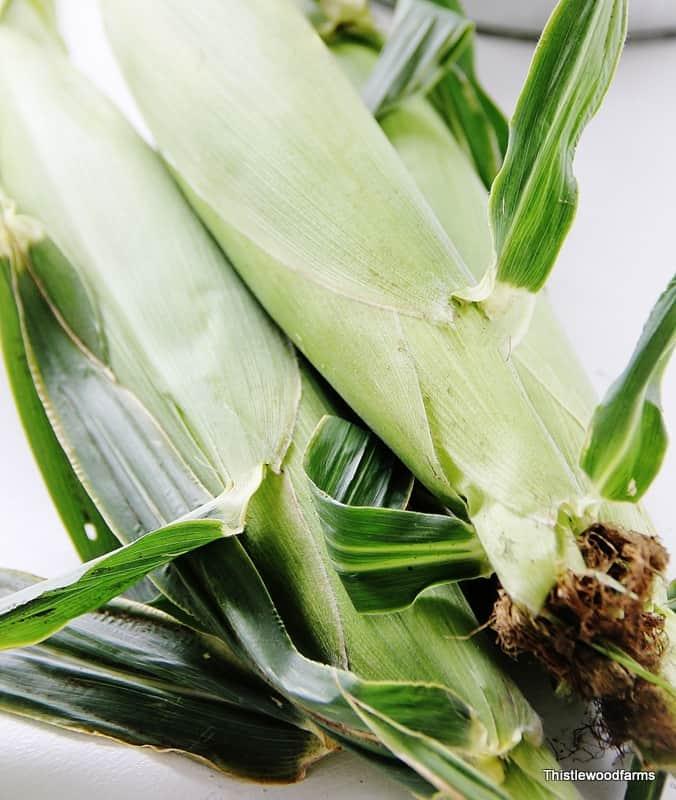 Corn shucks