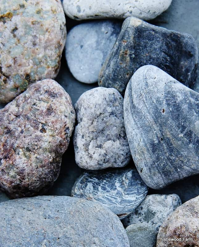 Stone from Cape Cod