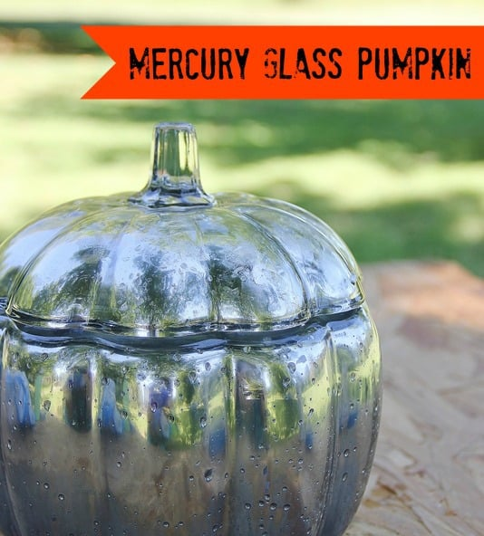 Mercury glass pumpkin how to