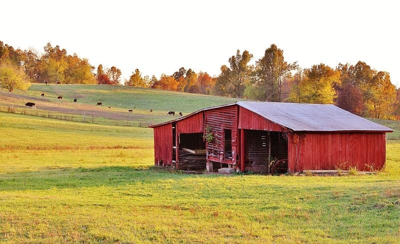 Kentucky_Barn