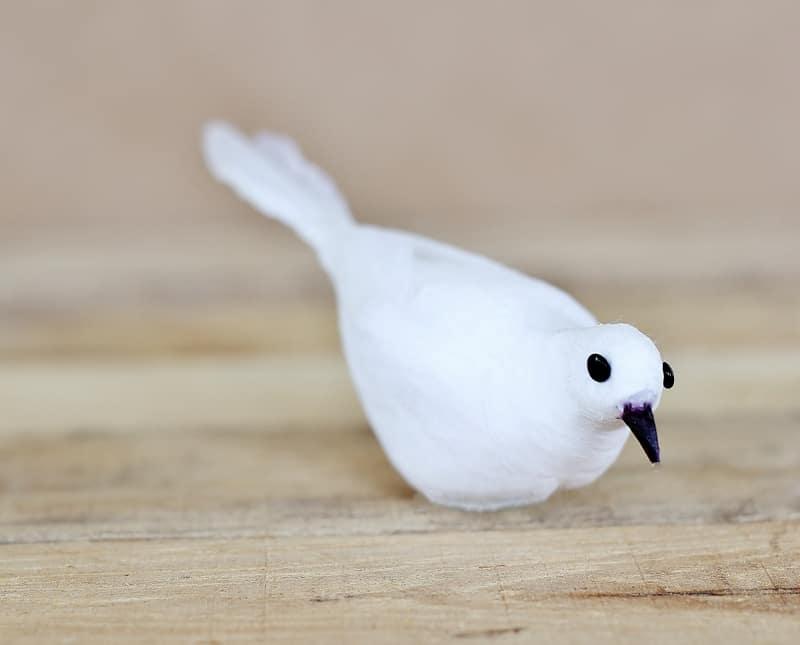 Dollar Tree Bird