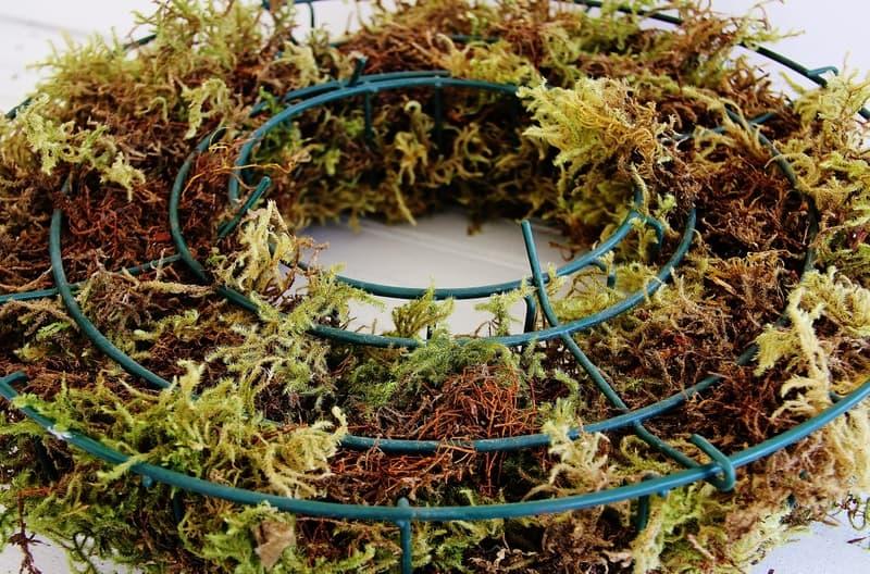 1-Living-Herb-Wreath