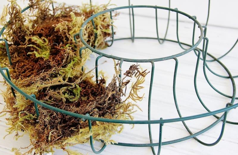 1-Wreath-form-Moss