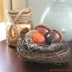 Acorns in a Nest Thumbnail