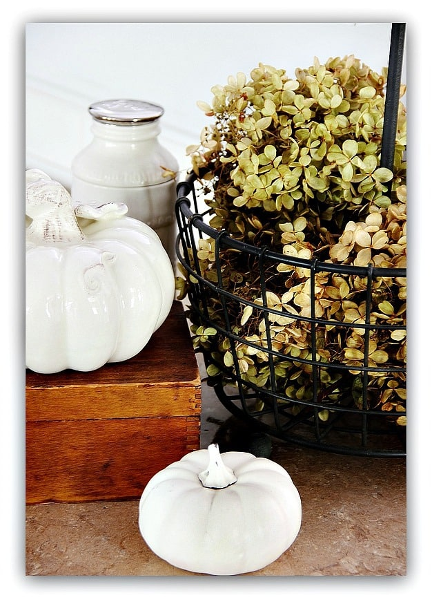 These mini white pumpkins pair well with the fresh hydrangeas for decor.