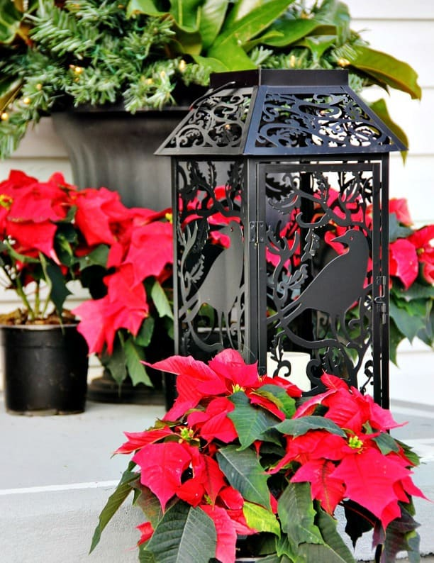 Front-door-decorating-ideas-porch