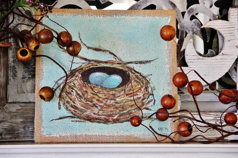 nest-picture