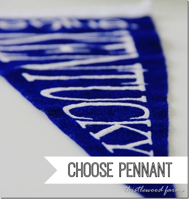 pennant-flag-pillow-pennant