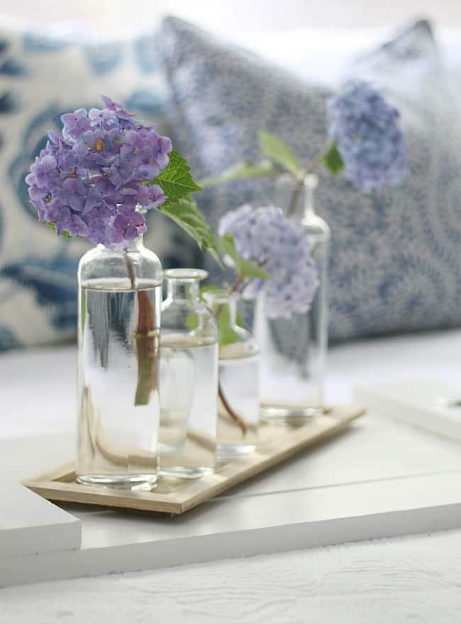 Why are hydrangeas not blooming hydrangeas in vase