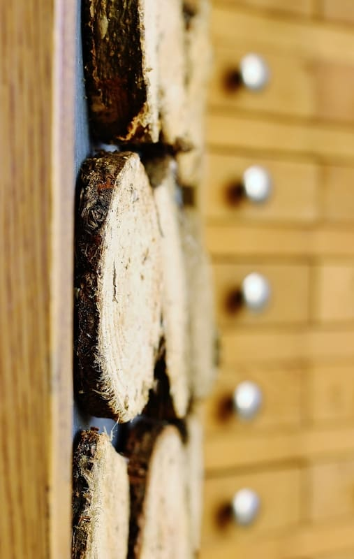 Wood Slice Christmas Tree how to