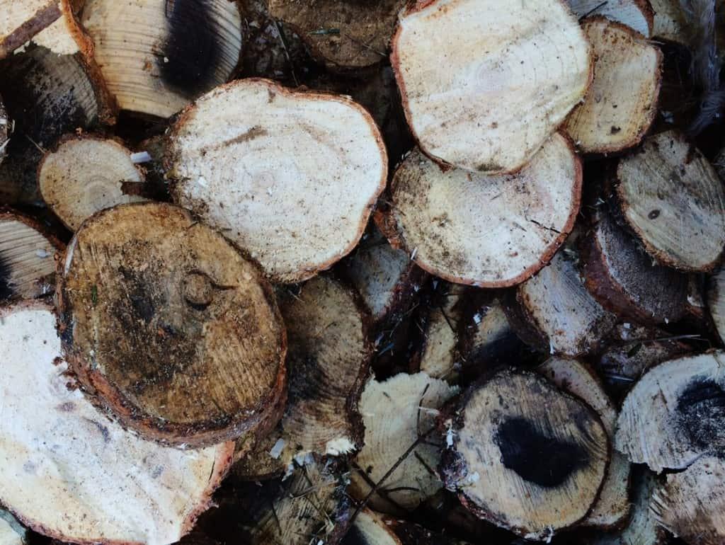 Wood Slices Pile handmade gift ideas