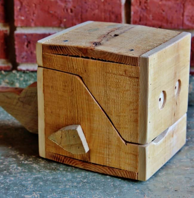 Project Wooden Box Ideas