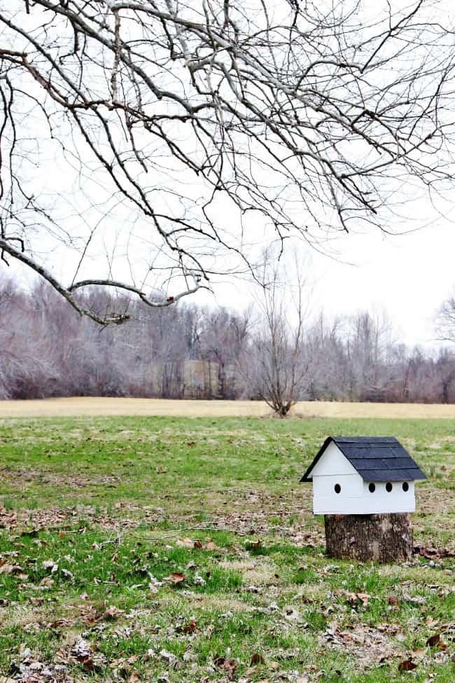 birdhouse on the farm
