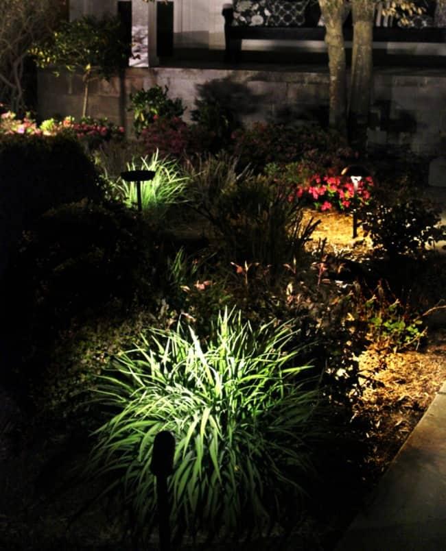 Simple Landscape Lighting Ideas
