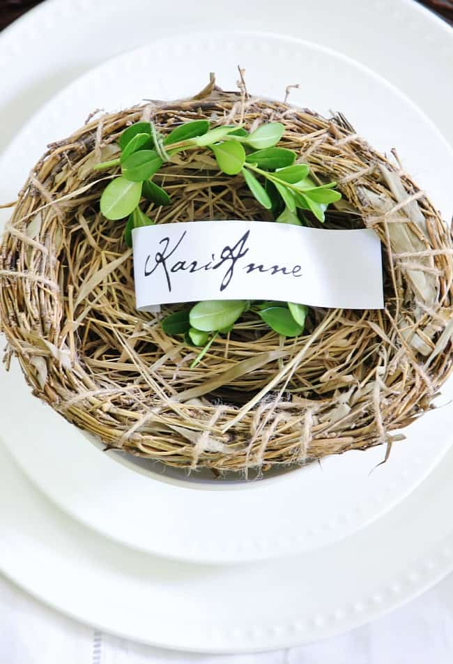 place setting nest