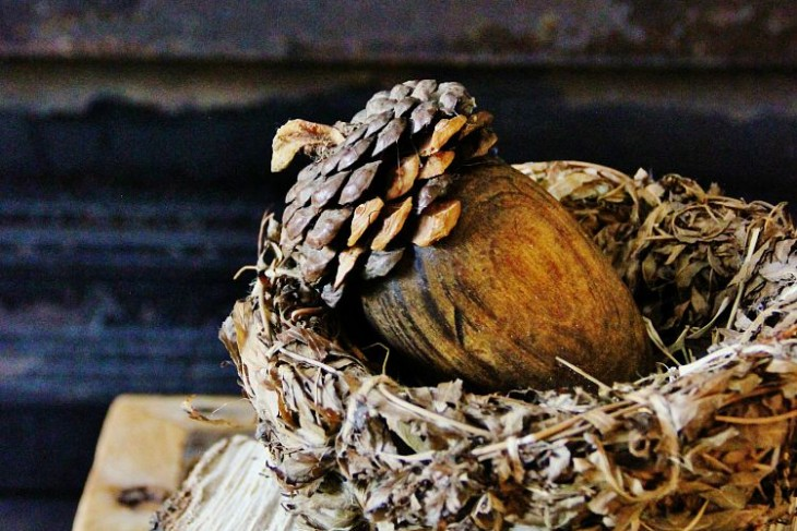 How to Make a Pinecone Acorn