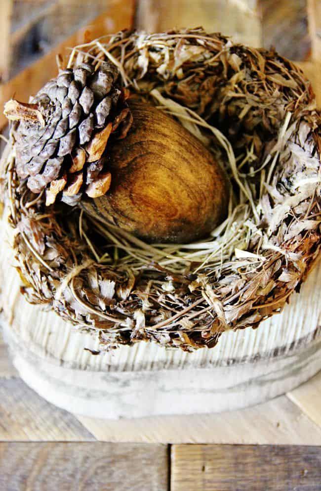 Pinecone Acorn DIY