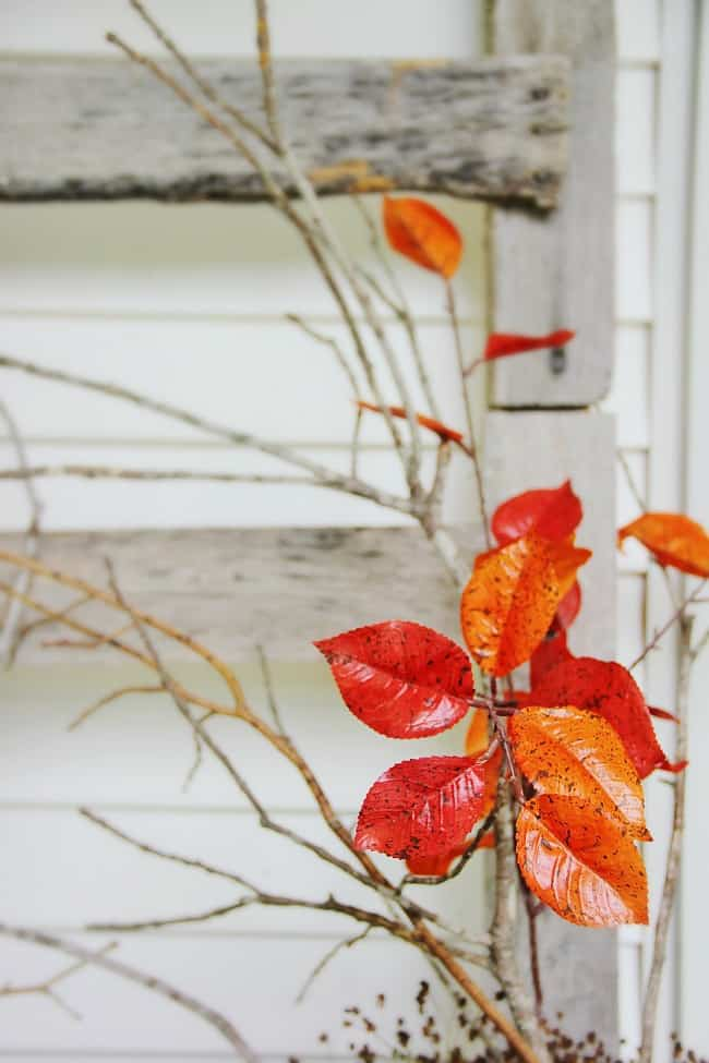 fall leaves porch