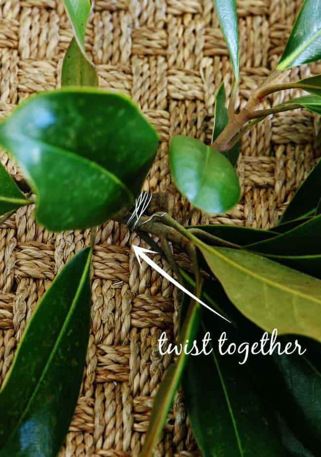 Twist together the magnolia branches