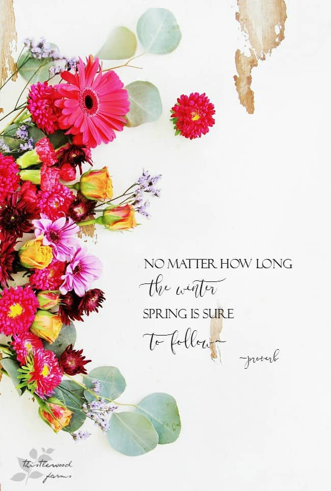 flowers and quote