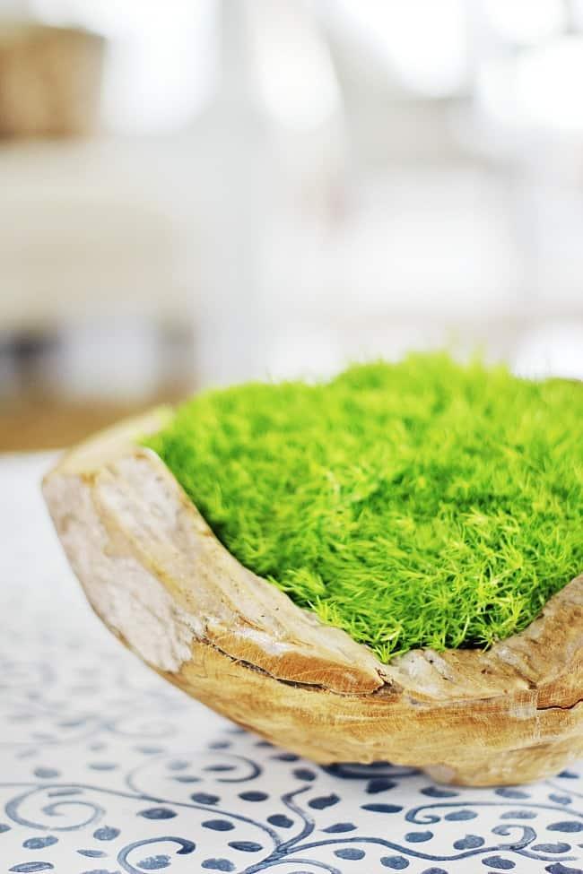 moss spring decor