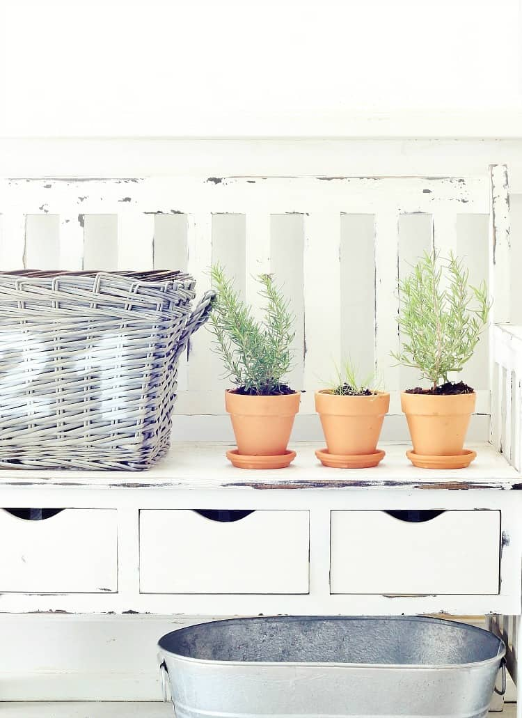 How to plant an herb garden project
