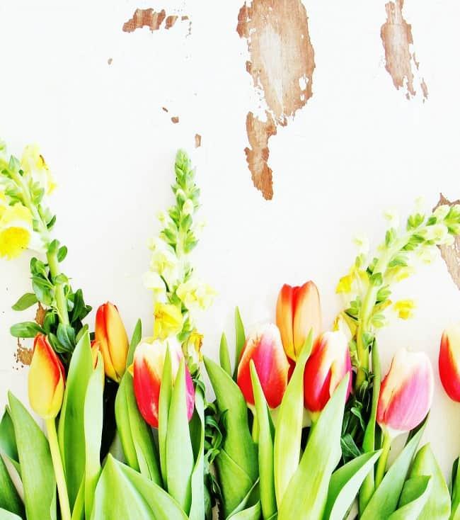 flower printable 3
