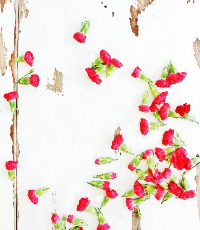flower printable 4