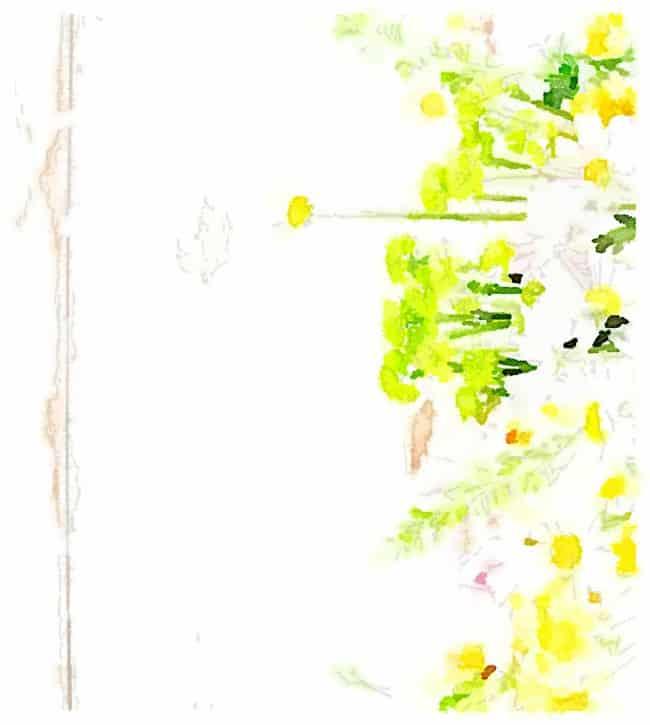 flower printable five