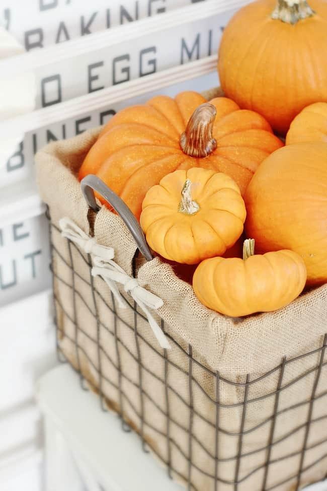 orange-pumpkins