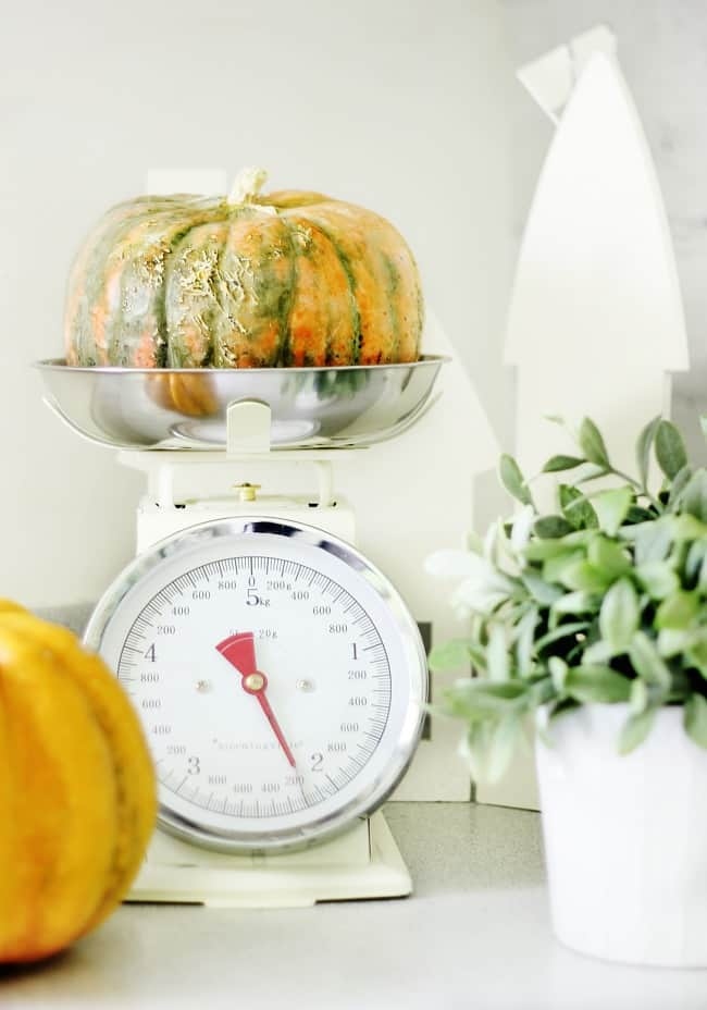 scale-and-pumpkin