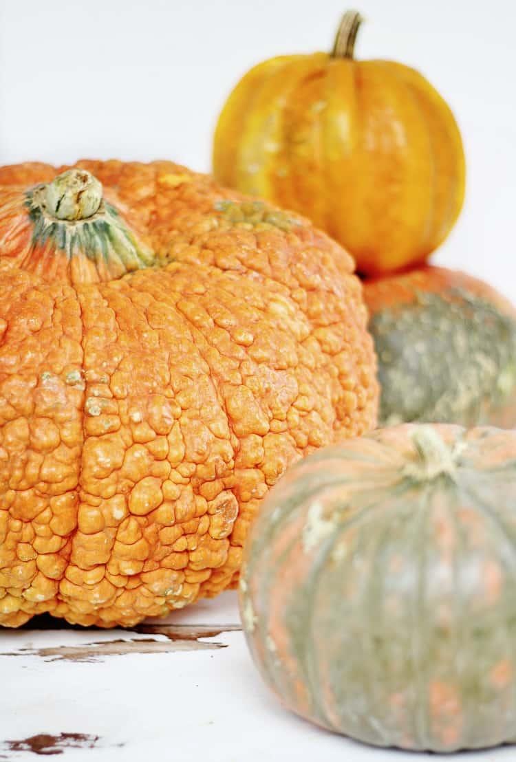 textured-pumpkins
