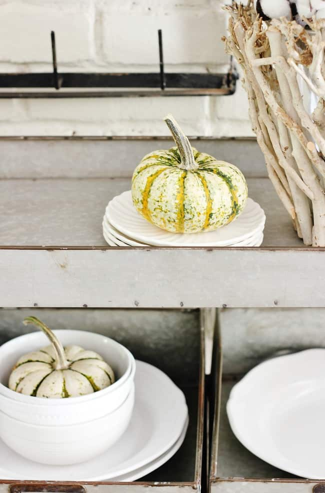 Gourds come in a variety of shapes, colors and sizes, and can easily transform your space