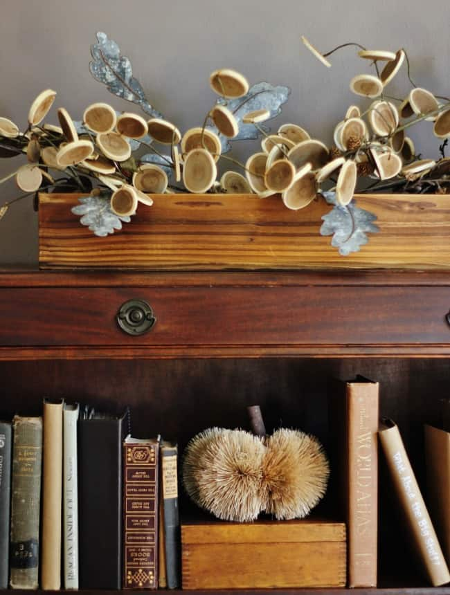 Small accents like old books and interesting plants add character to the bookcase.