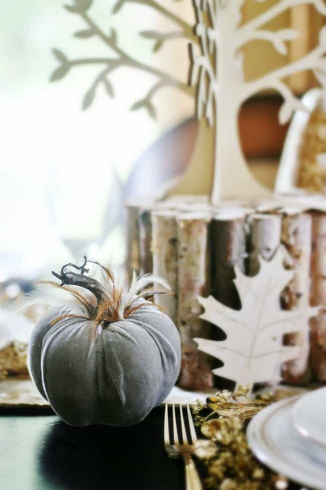 This cute stuffed pumpkin and fall accents are perfect for your home