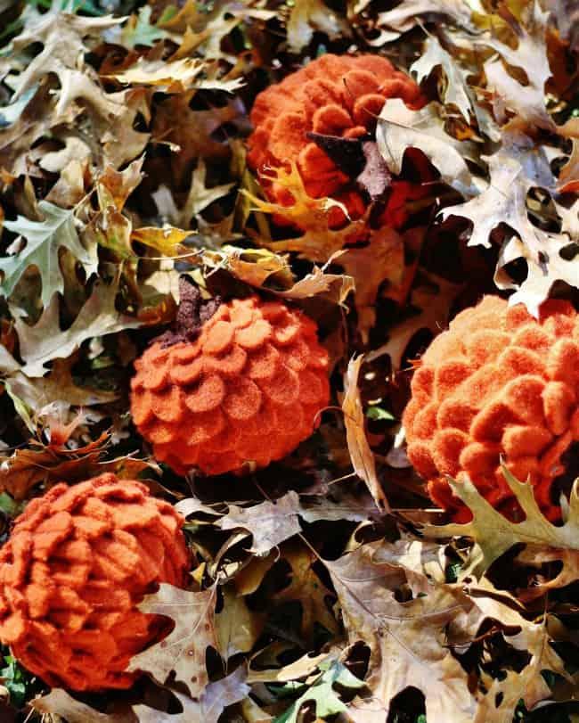 DIY felted wool pumpkin in leaves
