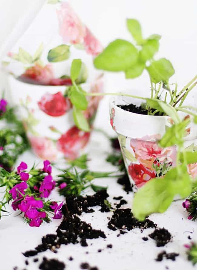 Spring Craft Diy Flower Pots For