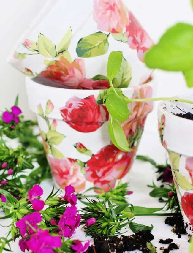 Spring Craft DIY flower pots with plantings