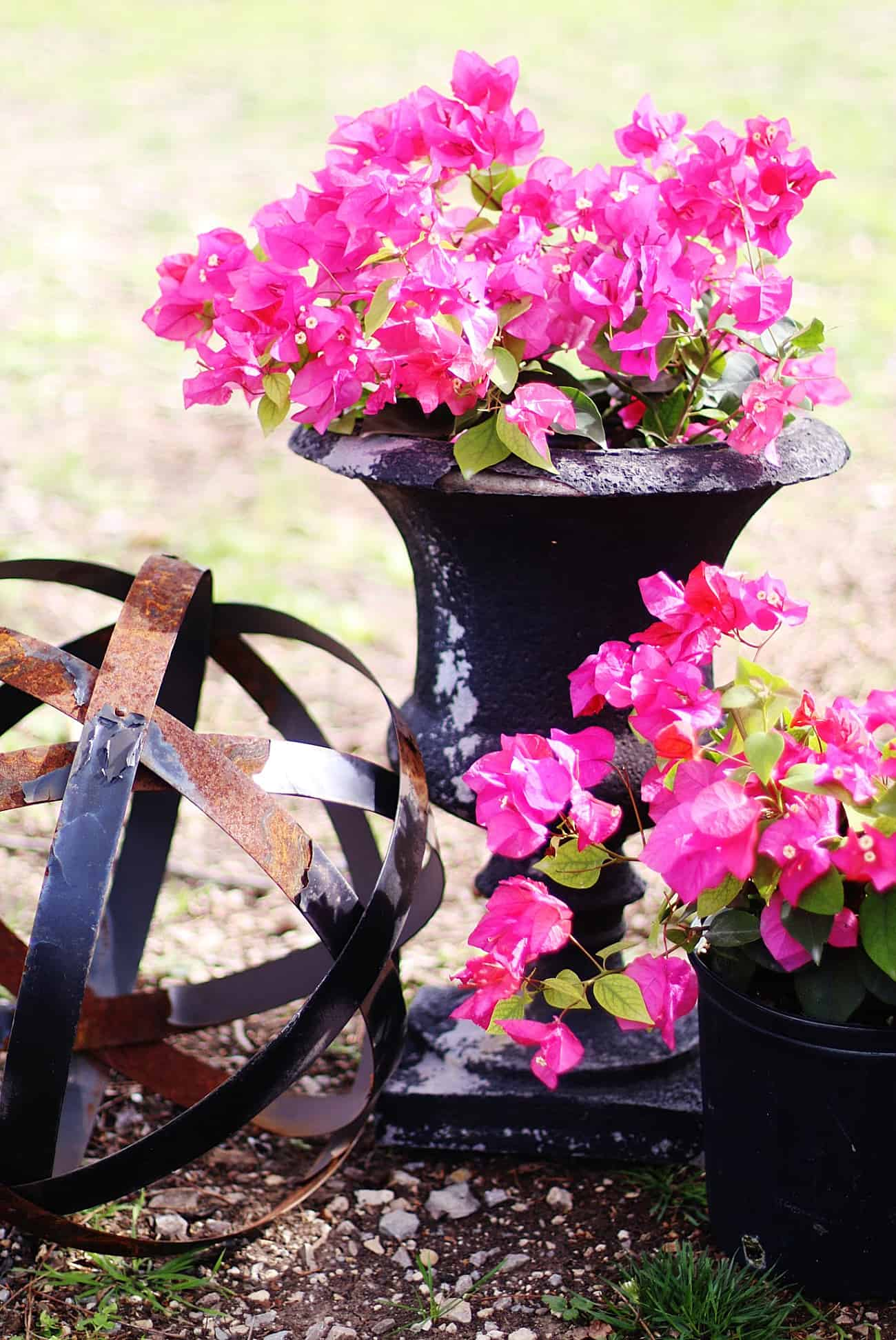 outdoor garden decor ideas flowers