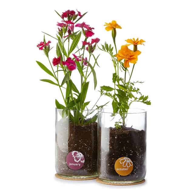 Best Mothers Day Gift Ideas planting flowers