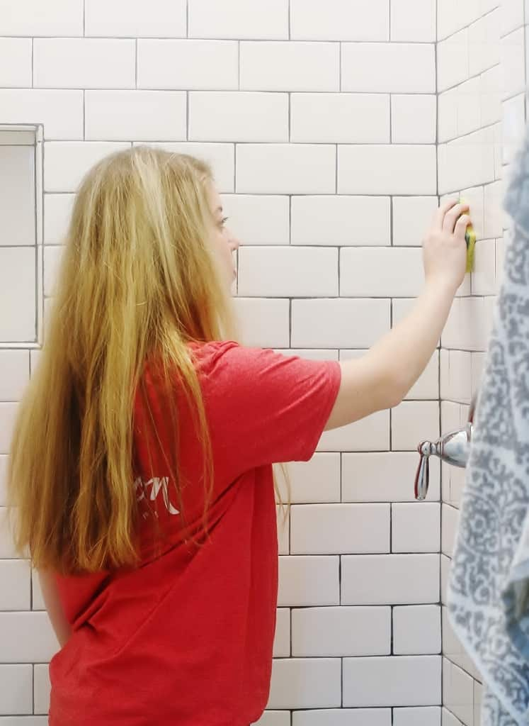 simple tips for cleaning the house shower